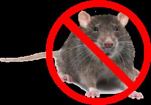 no_mice_sign