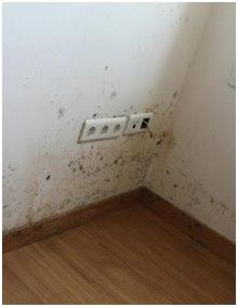 humedades en la pared