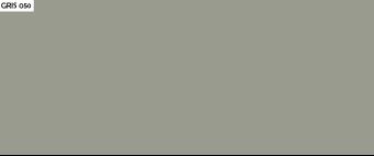 color pintura gris 050