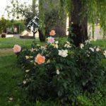 Jardin SATECMA
