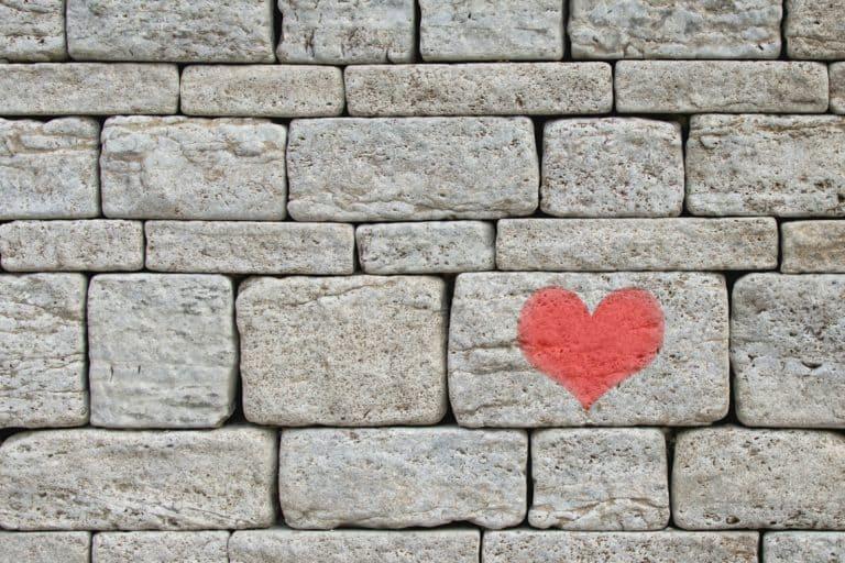 salud de pared